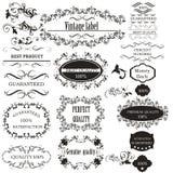 Raccolta degli elementi calligrafici di vettore per progettazione royalty illustrazione gratis