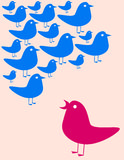 Raccolta degli uccelli illustrazione di stock