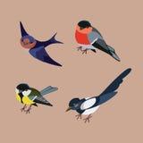 Raccolta degli uccelli della città di inverno Immagini Stock Libere da Diritti