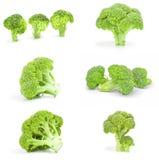 Raccolta dei broccoli verdi freschi isolati su un ritaglio bianco del fondo Immagine Stock