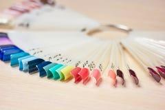 Raccolta dei campioni di colori dei chiodi Immagine Stock