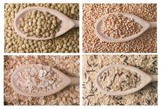 Raccolta dei cereali Fotografie Stock