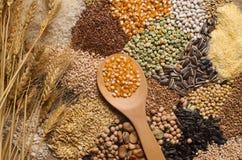 Raccolta dei cereali Fotografia Stock