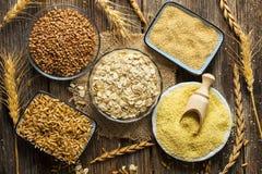 Raccolta dei cereali Immagini Stock Libere da Diritti