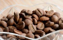 Raccolta dei chicchi di caffè, macro Fotografia Stock Libera da Diritti