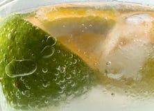 Raccolta dei cocktail - Gin Fizz (zumato) Fotografie Stock Libere da Diritti