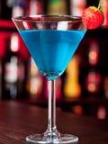 Raccolta dei cocktail - notte di Rusian Fotografie Stock Libere da Diritti