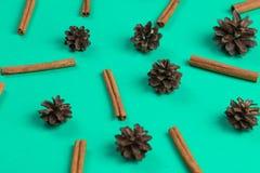 Raccolta dei coni e dei cinnamons sulla tavola blu illustrazione di stock