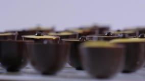 Raccolta dei dolci del cioccolato su un fondo bianco Le praline del cioccolato si chiudono su stock footage