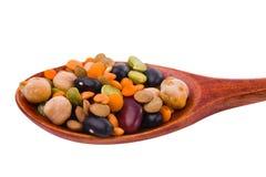 Raccolta dei fagioli, legumi, piselli, lenticchie sui cucchiai di legno Immagini Stock Libere da Diritti