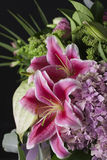 Raccolta dei fiori Immagine Stock Libera da Diritti