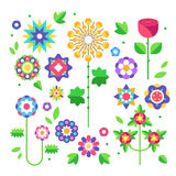 Raccolta dei fiori germogli e foglie Vettore Fotografia Stock