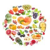 Raccolta dei frutti Fotografie Stock