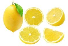 Raccolta dei frutti del limone isolata su bianco Immagine Stock Libera da Diritti