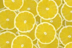 Raccolta dei frutti del limone su bianco Fotografie Stock