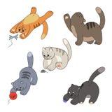 Raccolta dei gatti Fotografia Stock