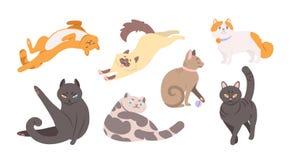 Raccolta dei gatti divertenti di varie razze che si trovano, sedentesi, washi illustrazione vettoriale