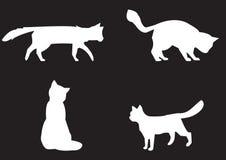 Raccolta dei gatti - siluetta di vettore Fotografia Stock