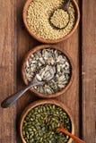 Raccolta dei legumi differenti Fotografia Stock Libera da Diritti