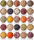 Raccolta dei legumi isolati su bianco con le etichette Fotografia Stock