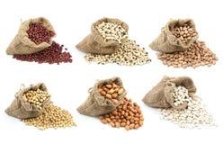 Raccolta dei legumi nella tazza isolata Immagini Stock Libere da Diritti