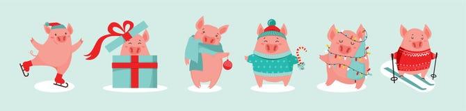 Raccolta dei maiali svegli di inverno Nuovo 2019 anni Simbolo dell'anno nel calendario cinese Fumetto di vettore isolato fotografie stock libere da diritti