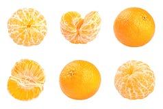 Raccolta dei mandarini freschi isolati su bianco Fotografia Stock Libera da Diritti