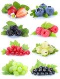 Raccolta dei mirtilli delle fragole dell'uva di frutti di bacche rossi Fotografia Stock