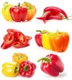 Raccolta dei peperoni rossi e gialli isolati sul backg bianco Fotografie Stock Libere da Diritti
