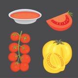 Raccolta dei pomodori e delle illustrazioni rossi freschi di vettore della minestra Mezzo, fetta, pomodoro ciliegia illustrazione vettoriale
