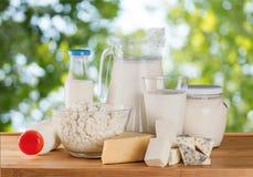 Raccolta dei prodotti lattier-caseario su luce verde Fotografie Stock