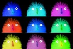 Raccolta dei pulcini di pasqua, primo piano Immagini Stock Libere da Diritti