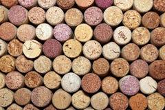Raccolta dei sugheri usati del vino dalle varietà differenti di vino Fotografie Stock Libere da Diritti