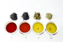 Raccolta dei tè differenti in tazze con le foglie di tè su un fondo bianco Fotografia Stock Libera da Diritti