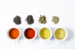 Raccolta dei tè differenti in tazze con le foglie di tè su un fondo bianco Fotografia Stock