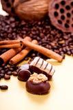 Raccolta dei truffels differenti delle praline del cioccolato Fotografie Stock