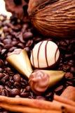 Raccolta dei truffels differenti delle praline del cioccolato Fotografie Stock Libere da Diritti