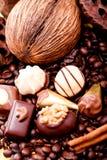 Raccolta dei truffels differenti delle praline del cioccolato Immagine Stock Libera da Diritti