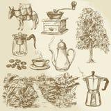 Raccolta del caffè illustrazione di stock