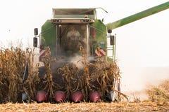 Raccolta del campo di grano con l'associazione fotografia stock