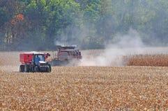 Raccolta del cereale Fotografia Stock Libera da Diritti