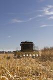 Raccolta del cereale Immagine Stock