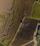Raccolta del cereale nella vista superiore aerea di autunno fotografia stock libera da diritti