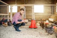 raccolta del coltivatore delle uova Fotografia Stock Libera da Diritti