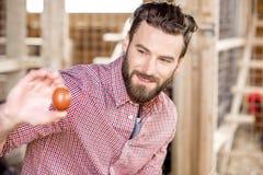 raccolta del coltivatore delle uova Fotografie Stock