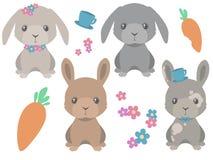 Raccolta del coniglietto marrone e grigio sveglio di stile del fumetto di pasqua con il vettore dei fiori della molla e delle car illustrazione di stock
