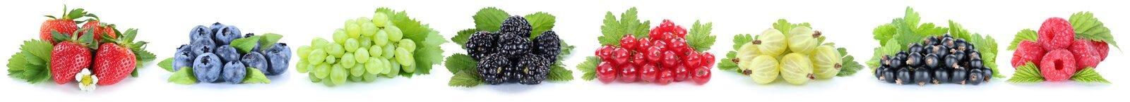Raccolta del curran di rosso dei mirtilli delle fragole dell'uva delle bacche Immagine Stock