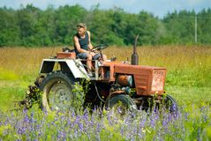 Raccolta del fieno con il trattore Fotografia Stock