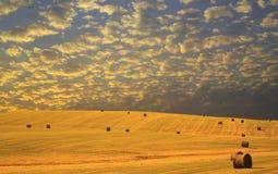 Raccolta del fieno di autunno al tramonto fotografia stock libera da diritti