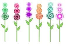 Raccolta del fiore Immagine Stock Libera da Diritti